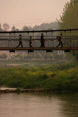 Crossing (Sunanda Chandry Koning) Tags: china travel bridge trees people green digital canon river walking photography eos photo asia 300d crossing chengdu sichuan 2009 canoneos300d hangingbridge april2009