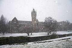 Day One Hundred and Ninety-Six (Bonar C) Tags: newzealand snow otago dunedin 365 project365 universityofotago 365196