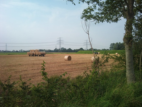 Making hay by XPeria2Day
