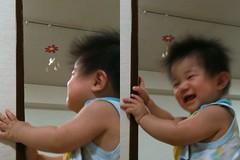 モビール見て笑うとらちゃん (8/20)