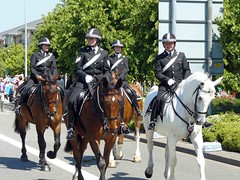 "Police quartet on horseback • <a style=""font-size:0.8em;"" href=""http://www.flickr.com/photos/36398778@N08/6069389340/"" target=""_blank"">View on Flickr</a>"