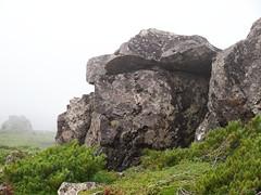 岩の上で箸休め