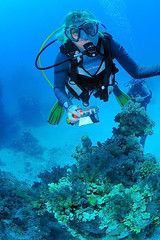 Egypt-201108-AbuFandiraFasMa-HannaPhotographing2 (Tony J Gilbert) Tags: fish macro divers nikon marine underwater redsea egypt wideangle diving fisheye tugboat 60mm wreck corals deepsouth d300 105mm nudibranchs seafans blueotwo warmwaterdiving egyptianredsea deepsouthborderlands bluevoyager andersjalmsjo wwwblueotwocom wwwaziabcom