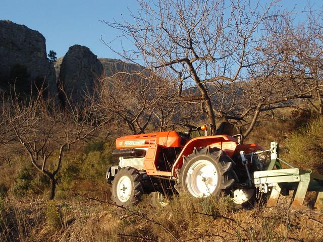Guhyaloka land work 1
