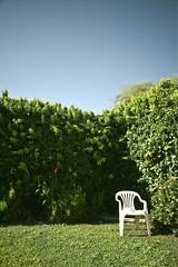 Garden ND (smee.bruce) Tags: longexposure diy filter nd weldingglass leefilterholder