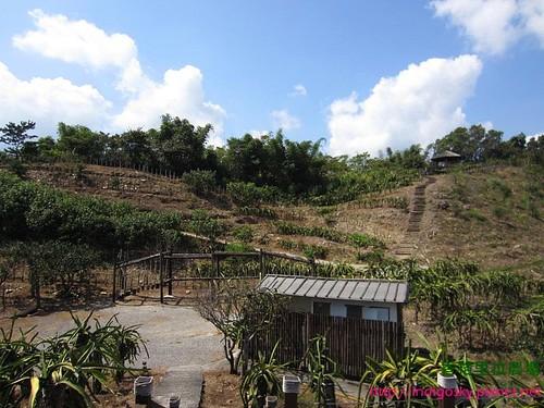 香格里拉農場150