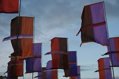Womad flags