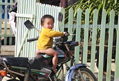 75_LAO38370098 (TC Yuen) Tags: vietnam sapa hmong terracefarming locai