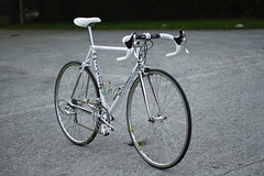(willy gil) Tags: bike bicycle miami steel master 7d fl colnago 50mmf18