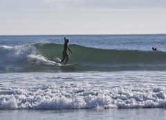 6070.2 Surfer finger LG (eyepiphany) Tags: oregon surf middlefinger camerashy givingthefinger oregonbeaches hostility summerlife surfinginoregon oregontourism manzanitta smuglerscove tappingthesource bestplacestosurf bestplacestosurfinoregon resentmentfinger surfergivingthefinger obscenewave hostilesurfer oregonbeachtowns manzanittaoregon surferwithatude surferwithanattitude