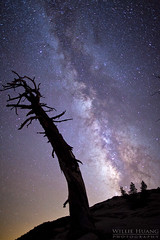 Milky Way Rise: Sentinel Dome (Willie Huang Photo) Tags: nature night stars landscape nationalpark scenic galaxy yosemite nightsky yosemitenationalpark glacierpoint milkyway sentineldome