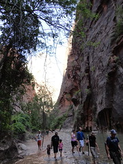 DSC00147 (johnspoelder) Tags: zion narrows