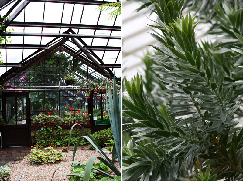 Botanic Gardens10