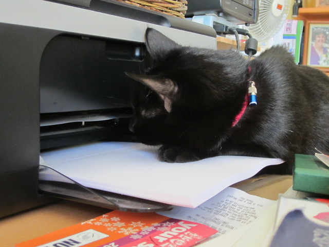 office assistant flo (5)