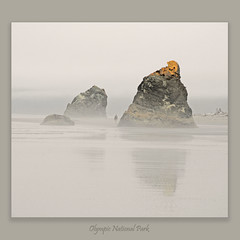 Ruby Beach #0506 (alexander.garin) Tags: seascape beach nature coast washington bravo rubybeach olympicnationalpark bestcapturesaoi elitegalleryaoi mygearandme
