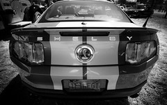 Shelby (King Ricker) Tags: ford canon eos rebel cobra tokina shelby gt500 t2i 1116mm