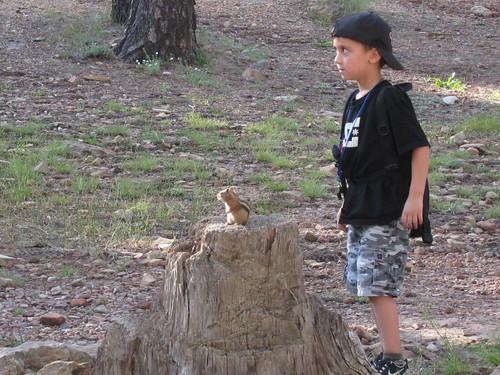 Camping AZ Aug 2011 025