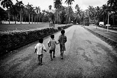 Towards The Cross (Satyaki Basu) Tags: street old travel trees people india church rain kids canon eos coconut basilica indian jesus goa velha monsoon 1750 bom tamron bnw 450d gettyimagesmiddleeast