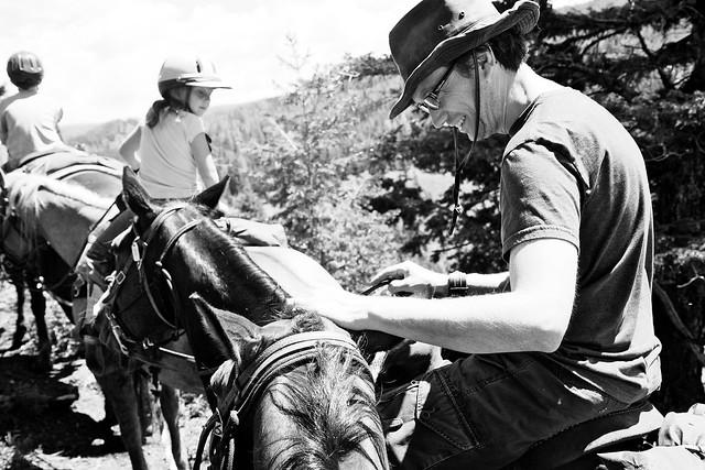 Black Mountain Colorado Dude Ranch bugfrog man horse petting