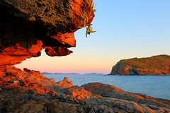 Sloping through the Pumpkin Wave (AdamNoosa) Tags: ocean sunset plant adam water rock pumpkin island bay great group wave barrier reef gormley sloping keppel adamgormley