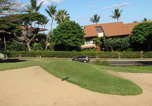 Maui Chiaki 085