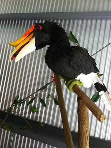 Borneo Shipment - Shelburne Museum