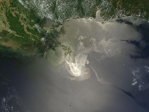 Gulf Coast Oil Spill