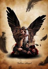 Fallen Angel (Kris682) Tags: rose angel photoshop skull vampire feathers manipulation fallen