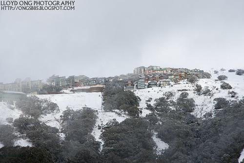 Mt Buller Town View