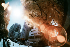(d3sign) Tags: 3 lens ir hongkong sony fisheye flare infrared kit 16mm converter nex nex3 vclecf1