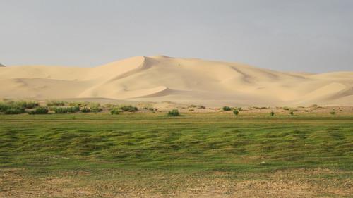 Desierto del Gobi 90