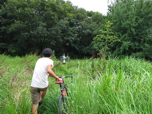 110827 埼玉 秋ヶ瀬公園