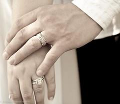 Kurowicki Wedding-82 (AllisonMariePhoto) Tags: park wedding nature happy hands michigan marriage rings happycouple weddingring saline lightroom adobelightroom