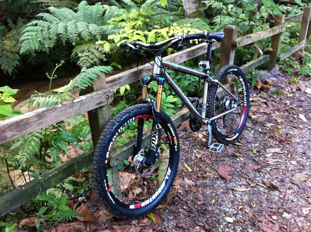 Bukit Timah Mountain Bike Trail