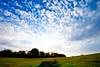 New horizons (Steve-h) Tags: ireland sky dublin nature grass clouds europa europe eu parkland treees milltown steveh manfrottotripod riverdodder canonef1635mmf28liiusm 190cxpro4 canoneos5dmk2 bestcapturesaoi doublyniceshot doubleniceshot mygearandme mygearandmepremium mygearandmebronze mygearandmesilver mygearandmegold mygearandmeplatinum mygearandmediamond artistoftheyearlevel3 artistoftheyearlevel4 explorelastsevendaysinteresting artistoftheyearlevel5 lightweightgear 391rc2manfrottohead