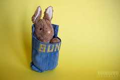 150/365 (_Codename_) Tags: rabbit bunny childhood yellow toy pouch stuffedanimal bestfriend bun sleepingbag 365project
