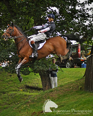 William Fox-Pitt and Parklane Hawk (Vicktrr) Tags: crosscountry equestrian 3dayeventing williamfoxpitt burghleyhorsetrials leafpit jonathanpaget parklanehawk leafpitlog dropfence