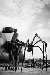 La Araña del Guggenheim (Mr.Groka (Gorka Valencia)) Tags: blackandwhite bw byn blancoynegro bn bilbao guggenheim araña bizkaia vizcaya paísvasco guggenheimbilbao museoguggenheimbilbao museoguggenheim