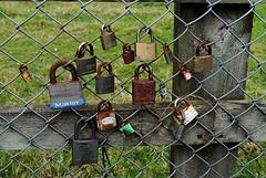 padlocks (Laura-may221B) Tags: fence padlocks
