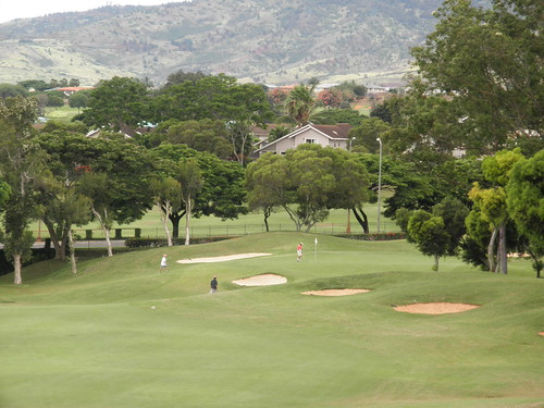 WAIKELE COUNTRY CLUB 157