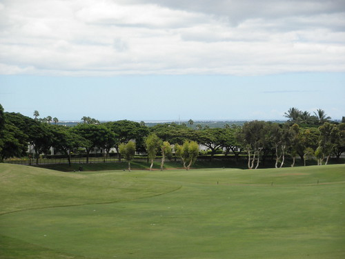 WAIKELE COUNTRY CLUB 217