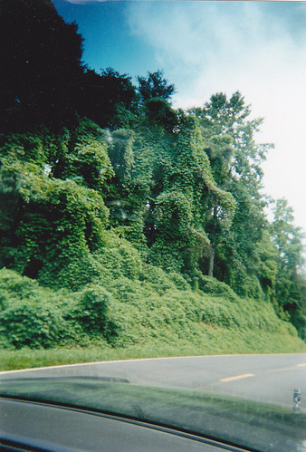 Kudzu sculpture near Atlanta