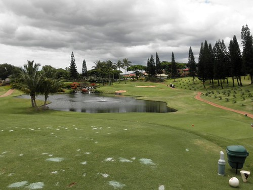 WAIKELE COUNTRY CLUB 244b