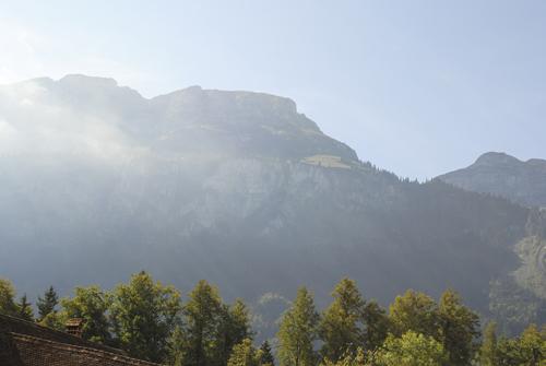 Swiss 2011
