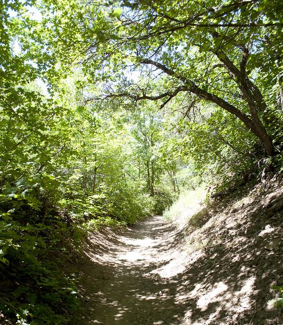 hike.2187