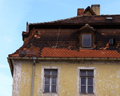 Decay (:Linda:) Tags: roof two window germany town decay thuringia dach dachziegel gaupe dormer rooftile gaube twowindows mansardroof mansarddach mansardendach dachgaupe dachgaube dachschindel neustadtanderorla frenchroof curbroof zweifenster kragdach curbedroof