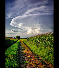 Clouds (alfvet) Tags: nikon ngc campagna npc vigevano d60 theworldwelivein colorphotoaward platinumheartaward veterinarifotografi doublyniceshot tripleniceshot mygearandme mygearandmepremium mygearandmebronze mygearandmesilver mygearandmegold mygearandmeplatinum mygearandmediamond artistoftheyearlevel3 artistoftheyearlevel4 flickrstruereflection1 flickrstruereflection2 flickrstruereflection3 flickrstruereflection4 flickrstruereflection5 flickrstruereflection6 flickrstruereflection7 artistoftheyearlevel5 4timesasnice 6timesasnice 5timesasnice 7timesasnice artistoftheyearlevel7 artistoftheyearlevel6