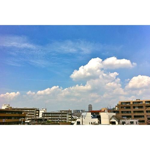 今日の写真 No.341 – 昨日Instagramへ投稿した写真(2枚)/iPhone4+Camera+