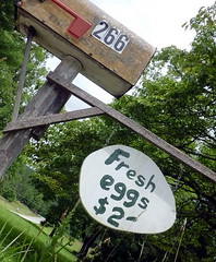 fresh eggs (Dave* Seven One) Tags: mountains home nature beauty fence country egg barbedwire eggs local fresheggs