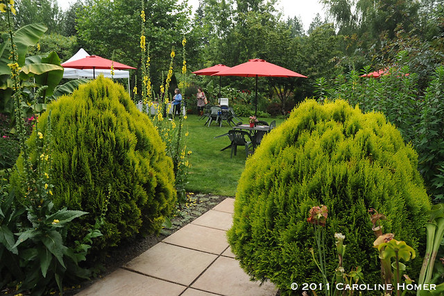 A garden party at Dragonfly Farms
